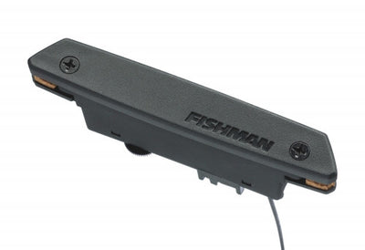 Fishman Rare Earth Soundhole Pickup PRO-REP-102