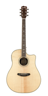 Breedlove Stage Dreadnought Guitar with Built In Electronics