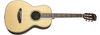 Breedlove Stage Parlor Limited Edition Acoustic Electric Guitar