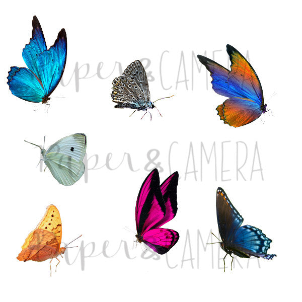 Butterflies Overlay Set - PicMonkey Compatible