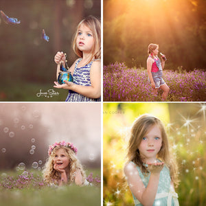 Seasons v2.0 Photo Overlay Bundle