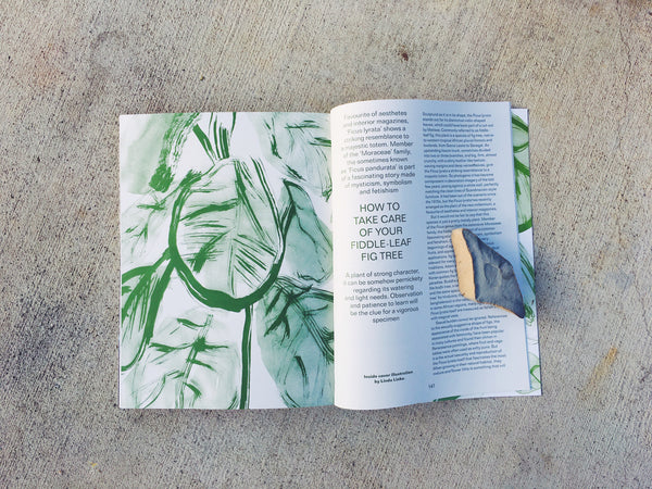 The Plant-Issue No. 8