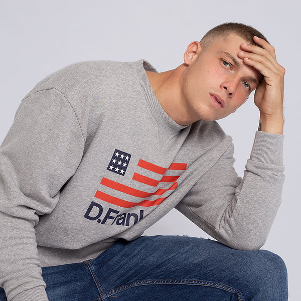 Sweatshirt D.Franklin Flag Grey