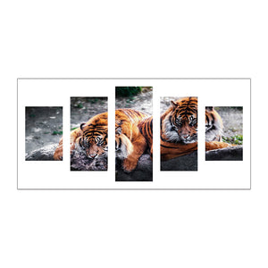 5pcs Diamond Painting - Full Round - Tigers