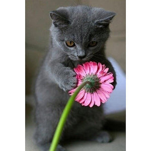 Diamond Painting - Full Round - Cat Flowers