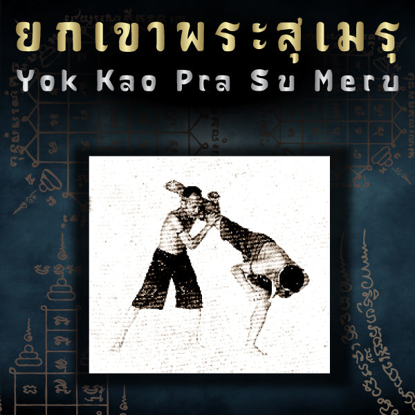 Muay Boran Moves : Yok Kao Pra Su Meru (Kick Block Throw)