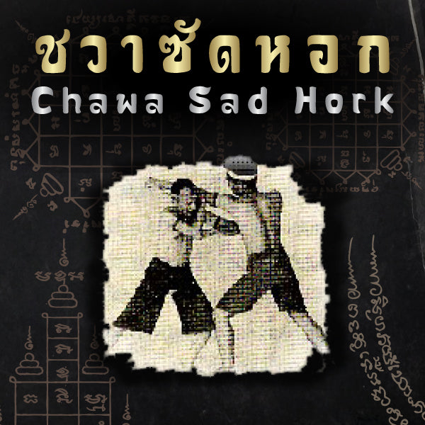 Muay Boran Moves : Chawa Sad Hork (Punch Block & Counter Attack)