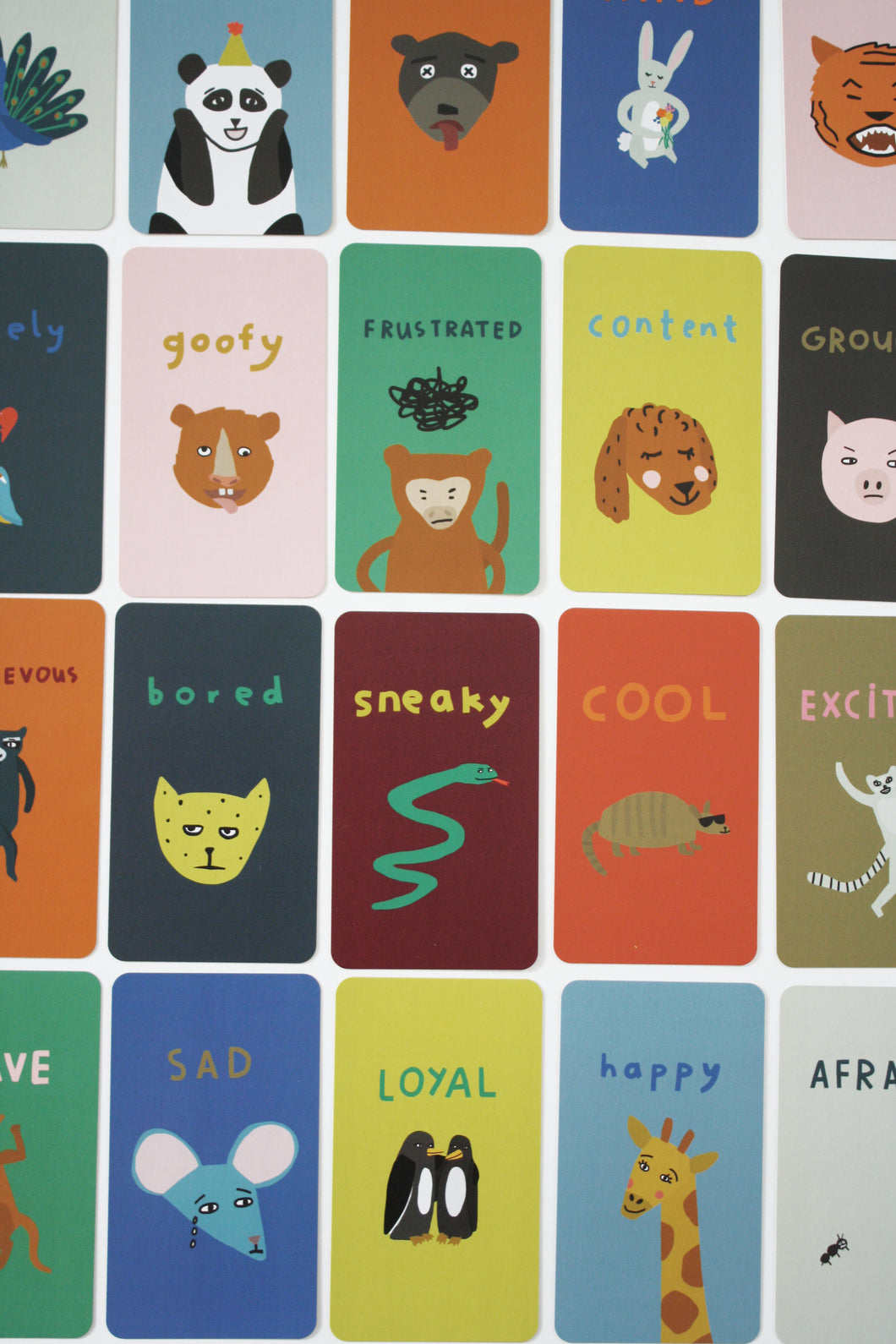 Animal Chat Cards