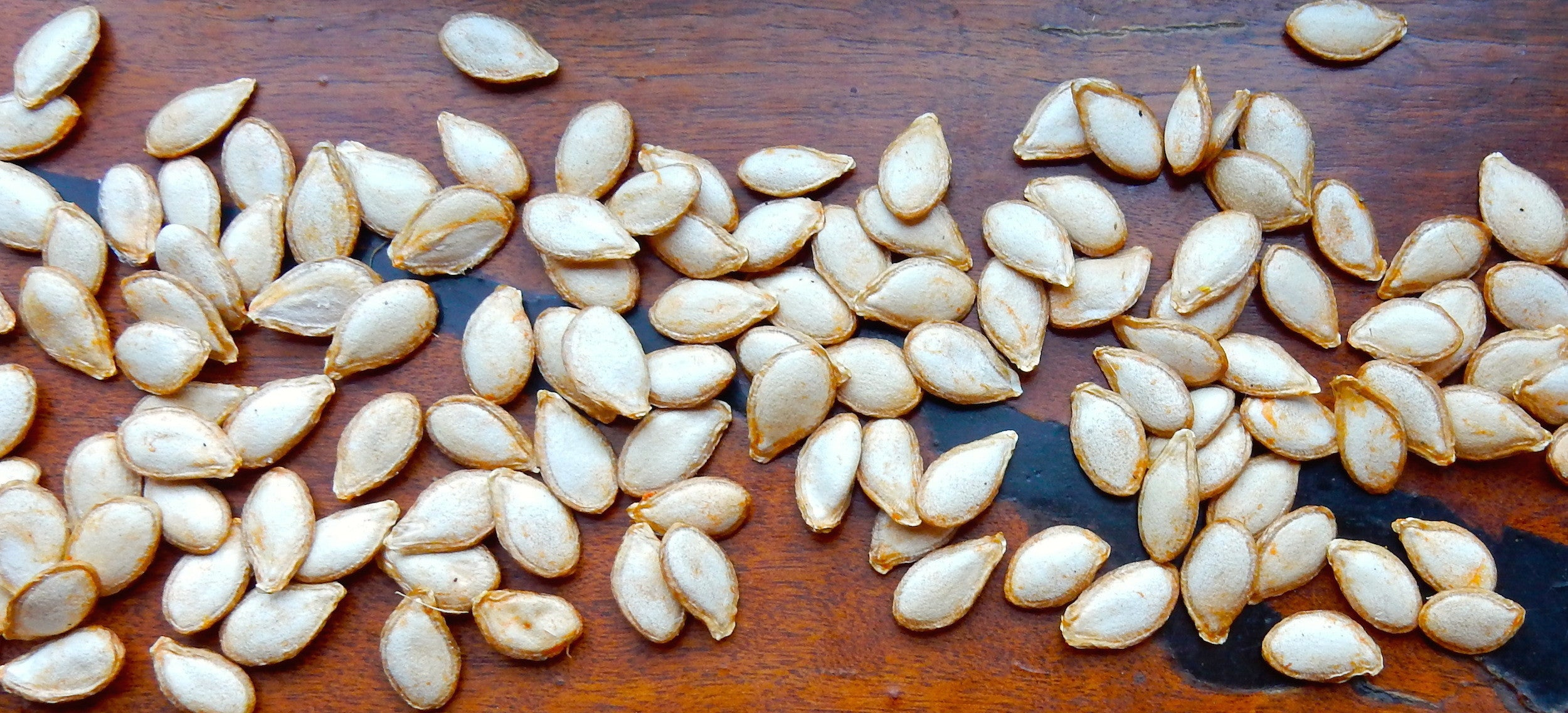 Pumpkin seeds from the Ecolosophy patch