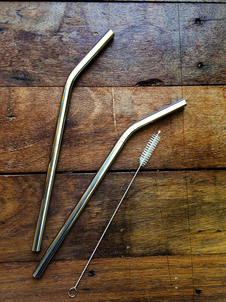 Ever Eco Stainless Steel Straws