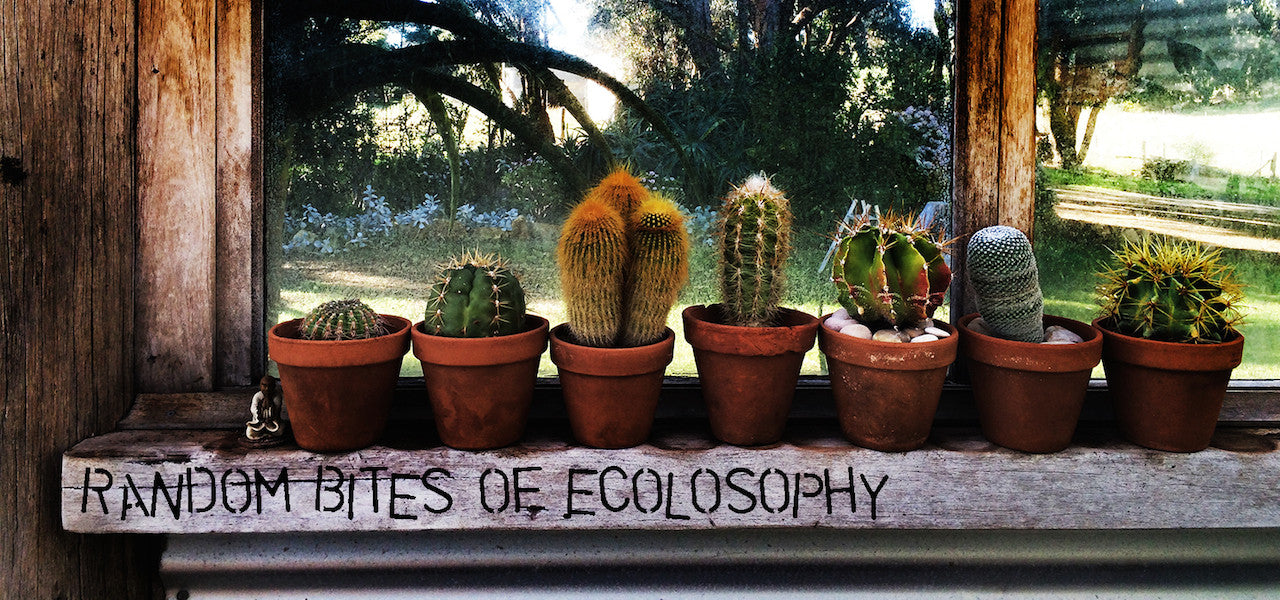Random Bites of Ecolosophy Blog