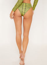 Load image into Gallery viewer, Long Sleeve U-neck Zipper Snakeskin Two-piece Bikini Swimsuits