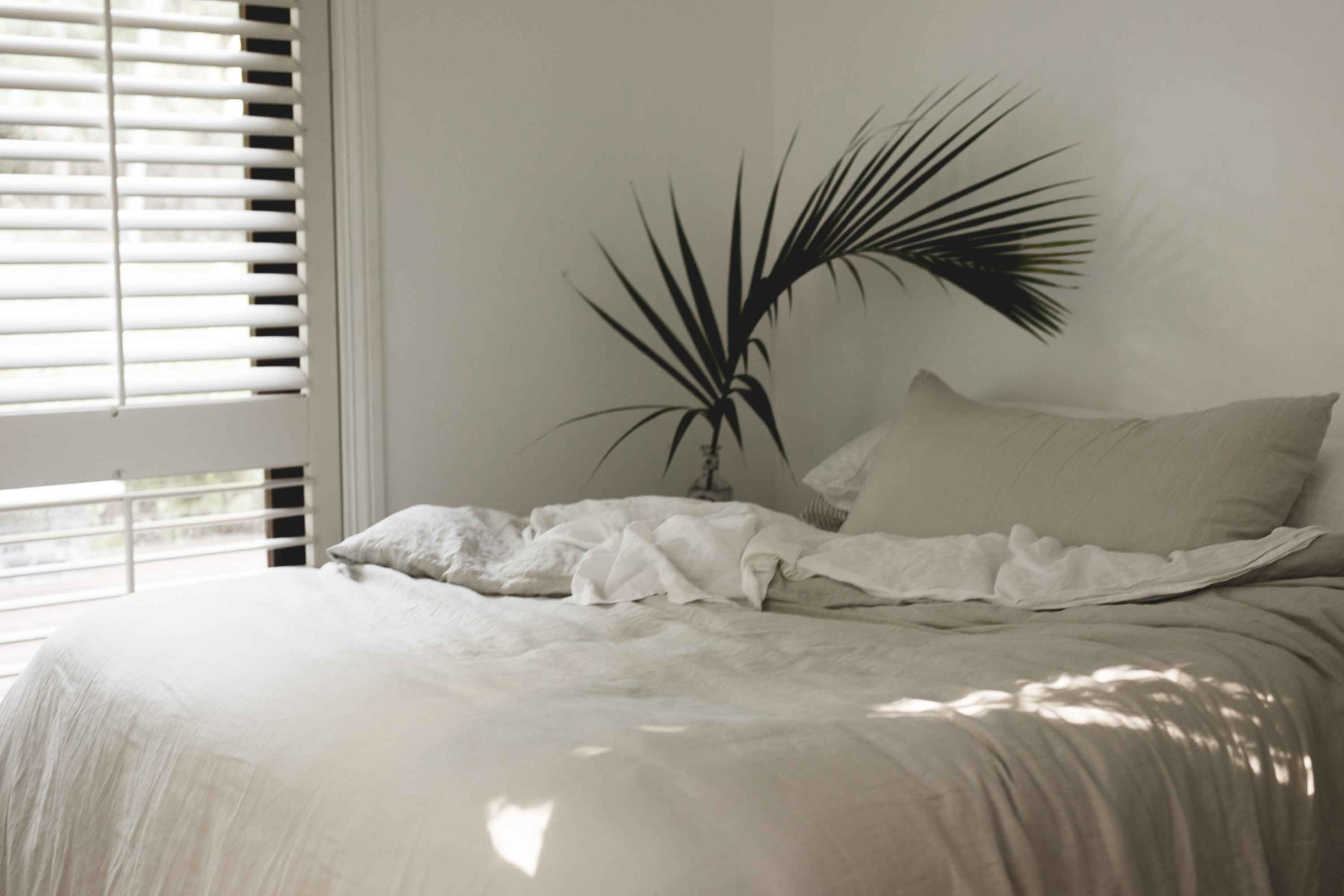 Chloë McCarthy for IN BED on Lord Howe Island.
