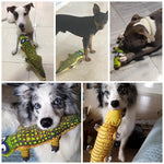 PetCricle Funny Alligator Chew Toy