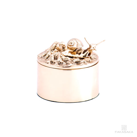 REM BOX<br>L' ESCARGOT DROITE ON TOP<br><br>POLISHED BRONZE