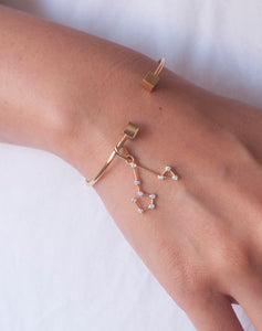 Constellation Bangle Charm Pisces