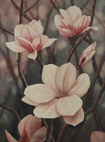 Magnolia Serenade, watercolour by Karen Richardson