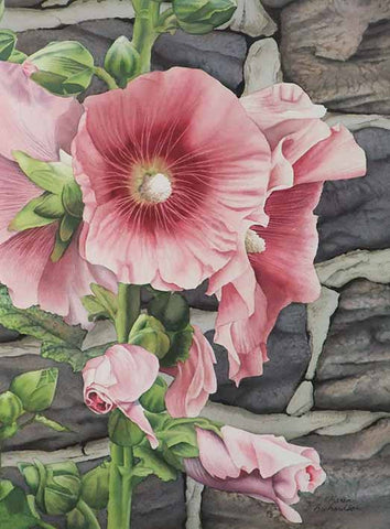 Hollyhock and Stone, watercolour by Karen Richardson