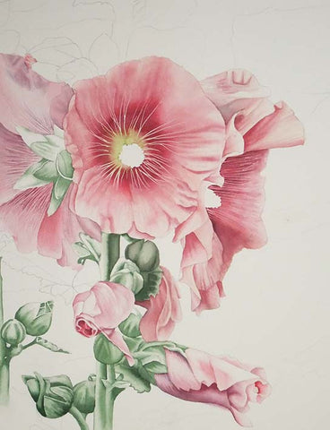 Hollyhock and Stone by Karen Richardson, step 1
