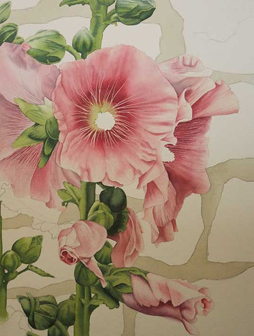 Hollyhock and Stone by Karen Richardson, step 2