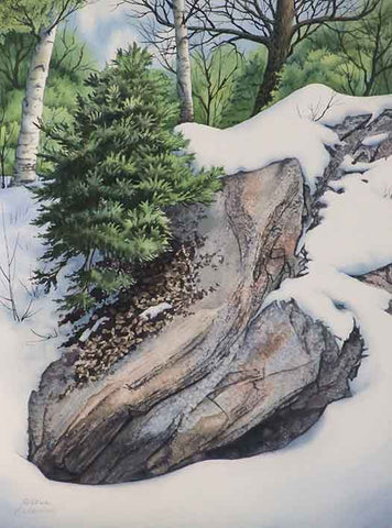 Snow and Stone, watercolour by Karen Richardson