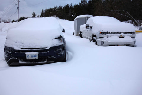 Snow on our trucks