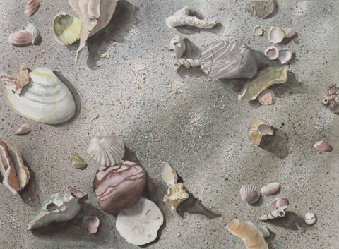 Student work from Sea Shells on Sand workshop with Karen Richardson