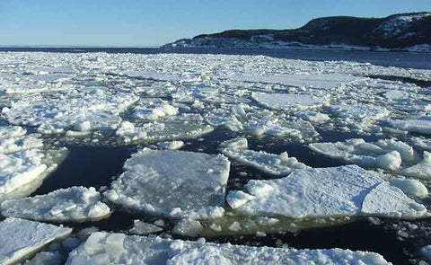 Ice Fkoes on the Saguenay River