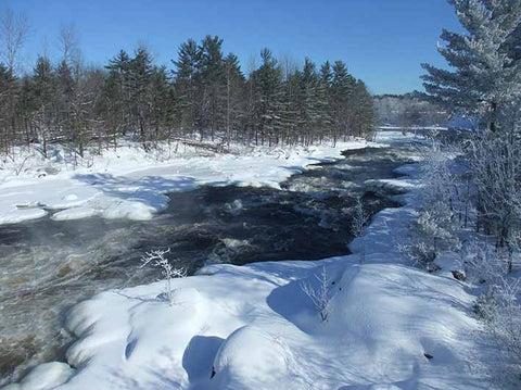 Photo of Petawawa River, taken by Karen Richardson
