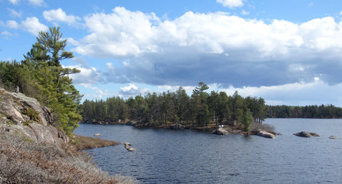 Northern Lake near Sudbury Ontario. Photo by Karen Richardson