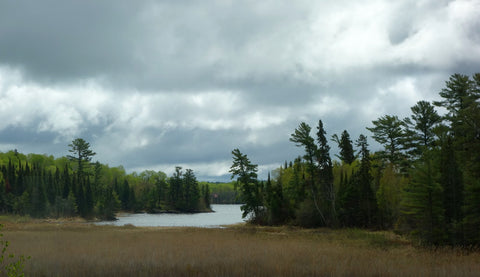 Lake of the Woods. Photo by Karen Richardson