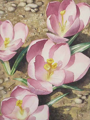 Crocus Focus, watercolour by Karen Richardson