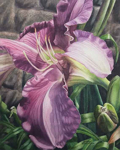 Garden Glory - Daylily, watercolour by Karen Richardson