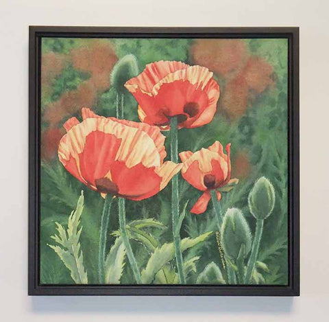 "Poppies With Pizzazz (watercolour on panel, 12 x 12"")"