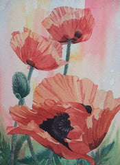 "Poppies on Parade, 14 x 10"", watercolour, matted"