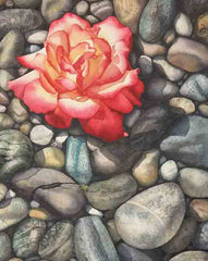"Rose on the Rocks, 14 x 11"", watercolour on panel (SOLD)"