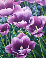 Tulip Time, watercolour by Karen Richardson