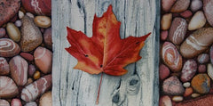 Canada Rocks! #1, watercolour by Karen Richardson