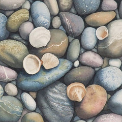 Shells Ashore, watercolour by Karen Richardson