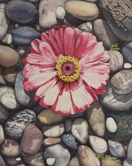 Zinnia on the Rocks, watercolour by Karen Richardson