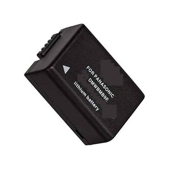 Panasonic Lumix DMC-FZ100GK Replacement Battery Compatible Replacement