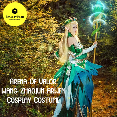 Arena Of Valor Wang Zhaojun Arwen Princess Cosplay Costume