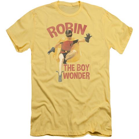 Batman Classic Tv T-Shirt - Boy Wonder Robin Short Sleeve Adult T-Shirt 30/1
