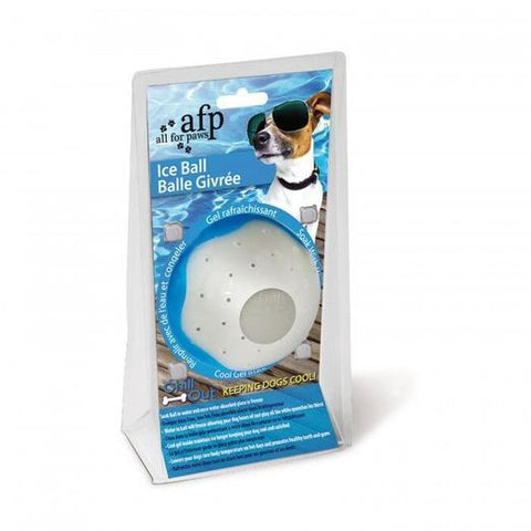 Image of All For Paws Ice Ball Toy