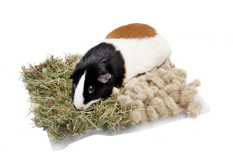 Image of Bunny Nature Interactive Snufflemat Hay & Hemp