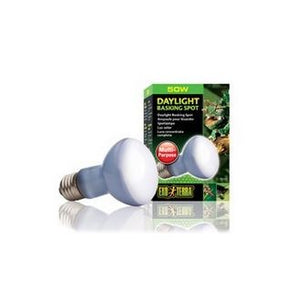 PT2131 DAYLIGHT BASKING SPOT LAMP R20/50W