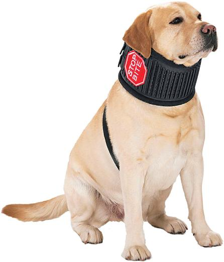Stop Bite Protective Collar