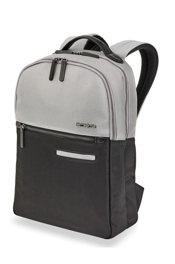 Samsonite Divinal Laptop Backpack in Silver/Black