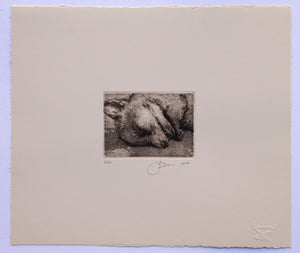 HALFSLEEP - LIMITED EDITION INTAGLIO PRINT