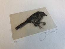 Load image into Gallery viewer, SPECIMEN - LIMITED EDITION INTAGLIO CHIN-COLLE'